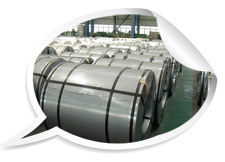 ss 316 hot rolled stainless steel coil